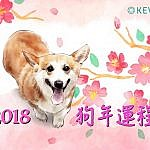 【2018 戊戍狗年】肖鼠运程